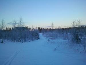 """""""Tietä käyden tien on vanki. Vapaa on vain umpihanki."""" Sanoi Aaro Hellaakoski. Mutta umpihanki tiellä on vähän helpompi hiihtää kuin metsässä"""